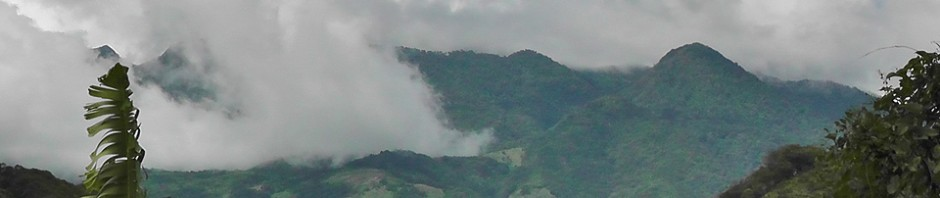 the Mountains of Boquete, Chiriqui, Panama
